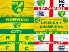 canaries Norwich Gain Promotion To Premier League To Mark Incredible Back to Back Promotion