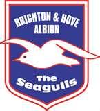 Review of Promoted Championship Sides – Brighton Hove Albion
