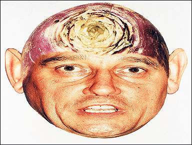graham-taylor-turnip
