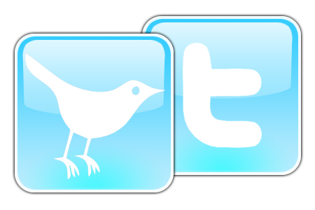 twitter bird 10 English Football Bloggers You Should Follow On Twitter