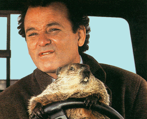 groundhog day Groundhog Day Plagues Fox Soccer Plus