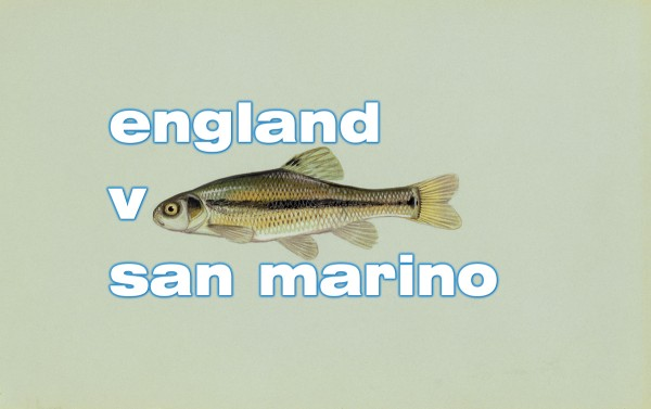 England versus San Marino 600x377 Post World Cup Exposes Weaknesses of US Soccer Commentators