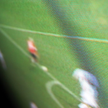 frame-of-soccer-on-tv
