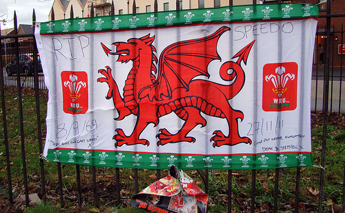 gary speed Craig Bellamy Dedicates Wales Victory Against Scotland To Tragic Gary Speed: The Daily EPL