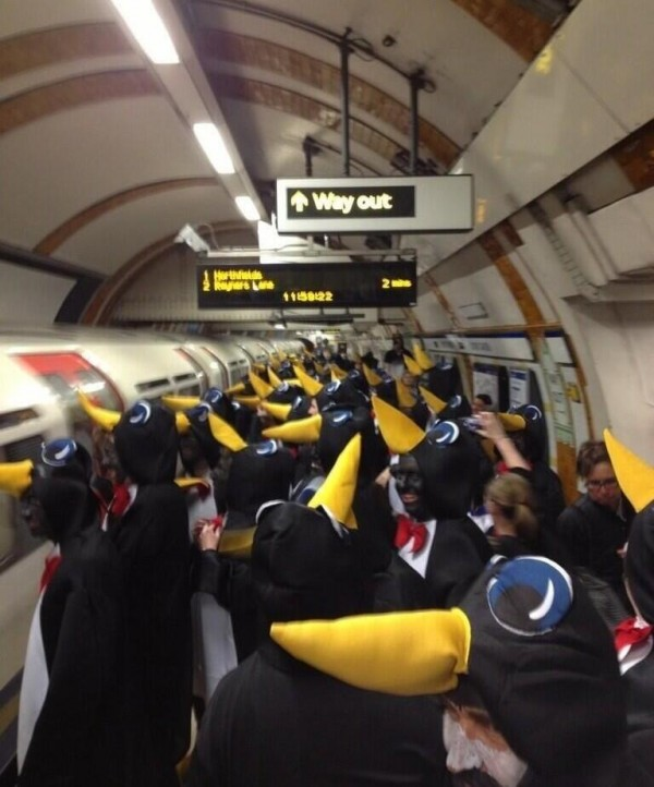 hartlepool fans small1 600x722 Hartlepool Supporters Dressed As Penguins Storm Through London Underground [PHOTOS]