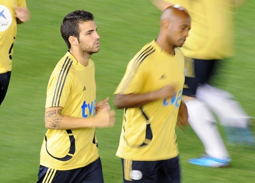 Spain's midfielder Cesc Fabregas (L) and