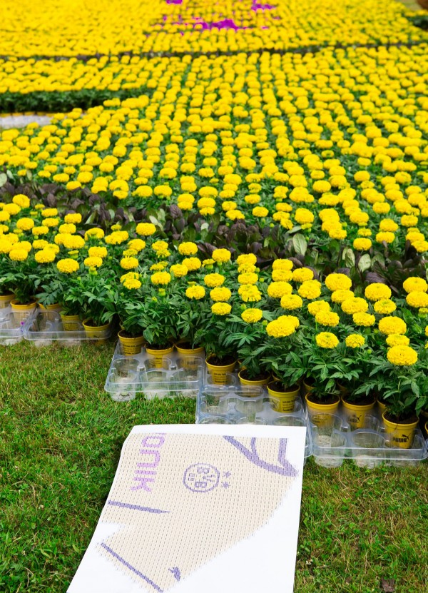 dortmund shirt close up park flowers 600x831 Borussia Dortmund Unveil Giant Sized New Kit at Westfalen Park [PHOTOS]