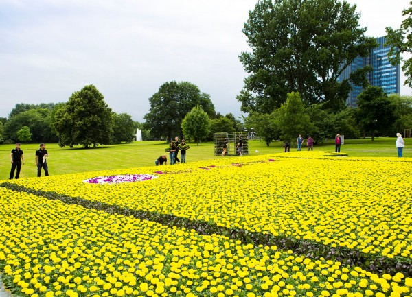 flowers closeup 600x433 Borussia Dortmund Unveil Giant Sized New Kit at Westfalen Park [PHOTOS]