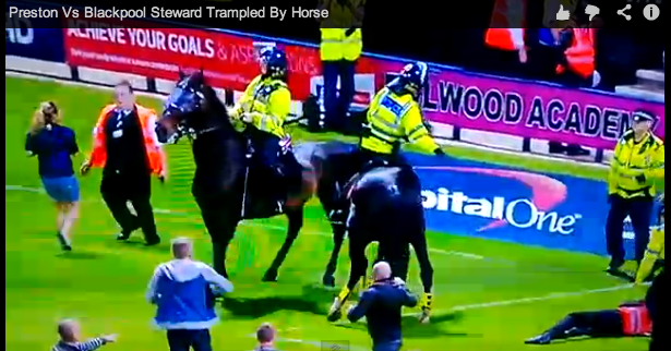 preston blackpool horse Steward Gets Trampled By Horse During Pitch Invasion at Preston Blackpool Match [VIDEO]