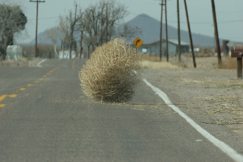 tumbleweeds What the International Break Feels Like ...