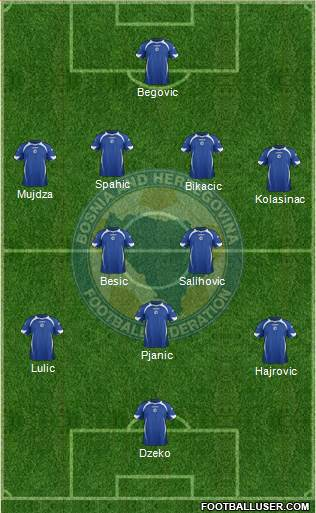 LIKELY BOSNIA XI FOR 2014 WORLD CUP