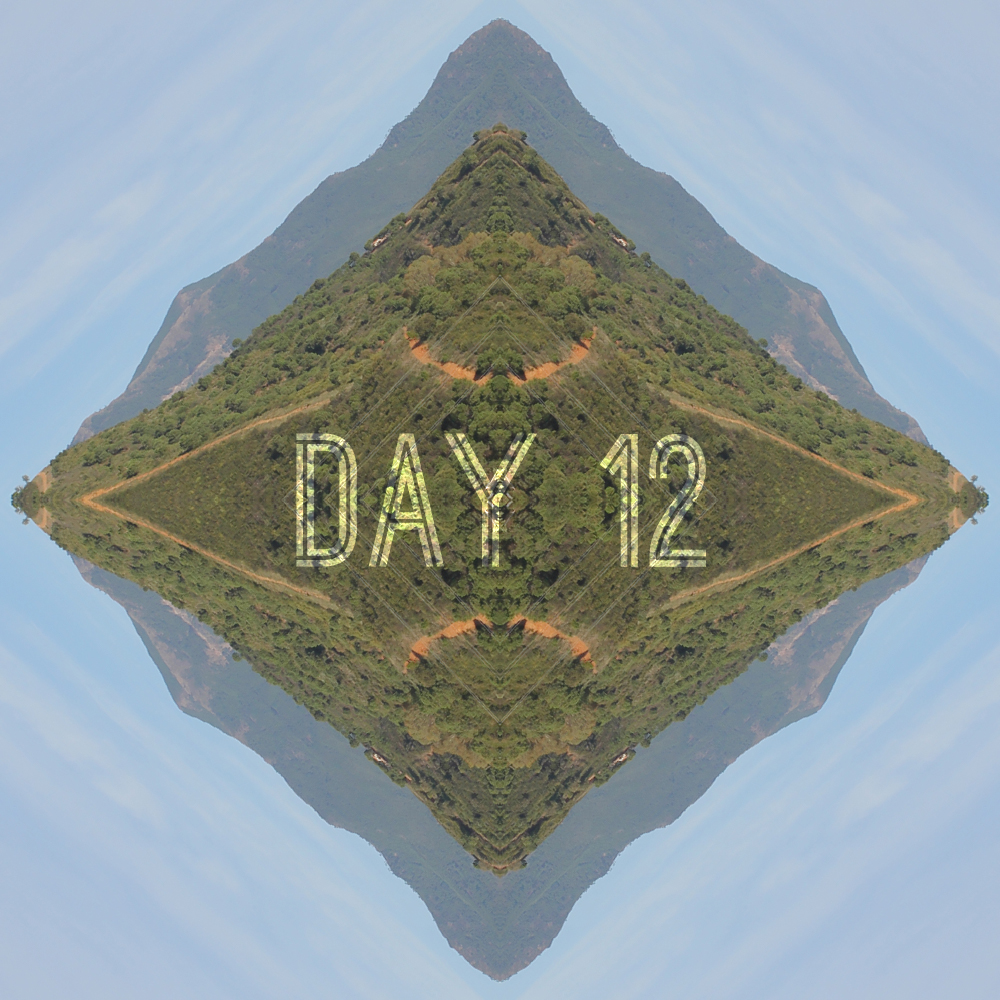 Day 12 – Out You Go (Brazil 2014 World Cup Show)