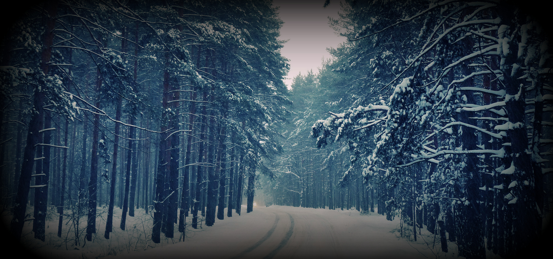 winter-header