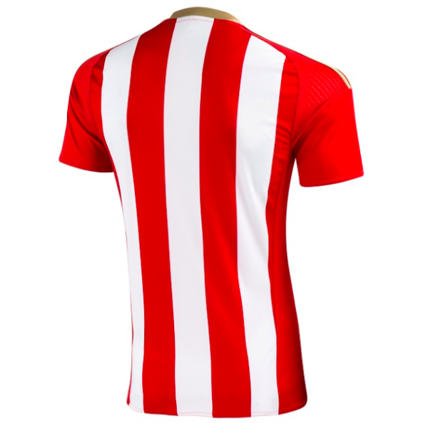 sunderland-home-jersey-back